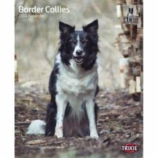 Calendrier Border Collie 2019