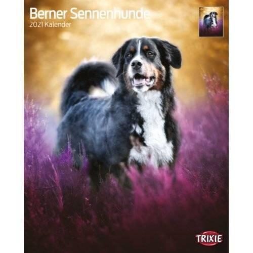 Calendrier Bouvier Bernois 2021 pour chien   Trixie | Auberdog