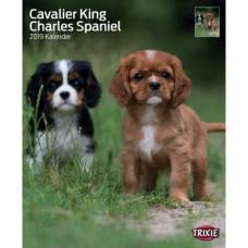 Calendrier Cavalier King Charles 2019