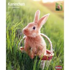 Calendrier Lapin 2021