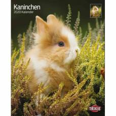 Calendrier Lapin 2020