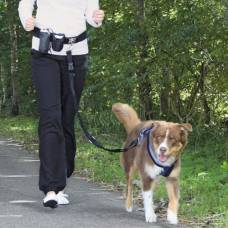 Ceinture laisse canicross Dog Activity