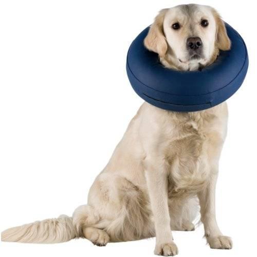 collerette chien de protection pour chien trixie auberdog. Black Bedroom Furniture Sets. Home Design Ideas