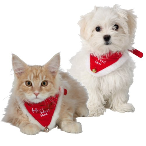 Collier de no l pour chien et chat pour chien trixie auberdog - Image de chat de noel ...