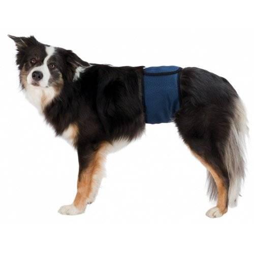 Couche pour chien m le bleu pour chien trixie auberdog - Couche pour chien femelle ...
