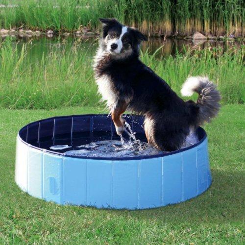 Piscine pour chien pour chien trixie auberdog for Piscine pour grand chien
