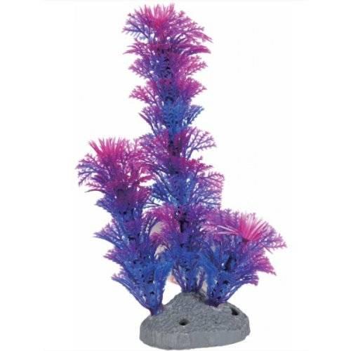 nano plante aquarium color plastique bleu pour poisson zolux auberdog. Black Bedroom Furniture Sets. Home Design Ideas