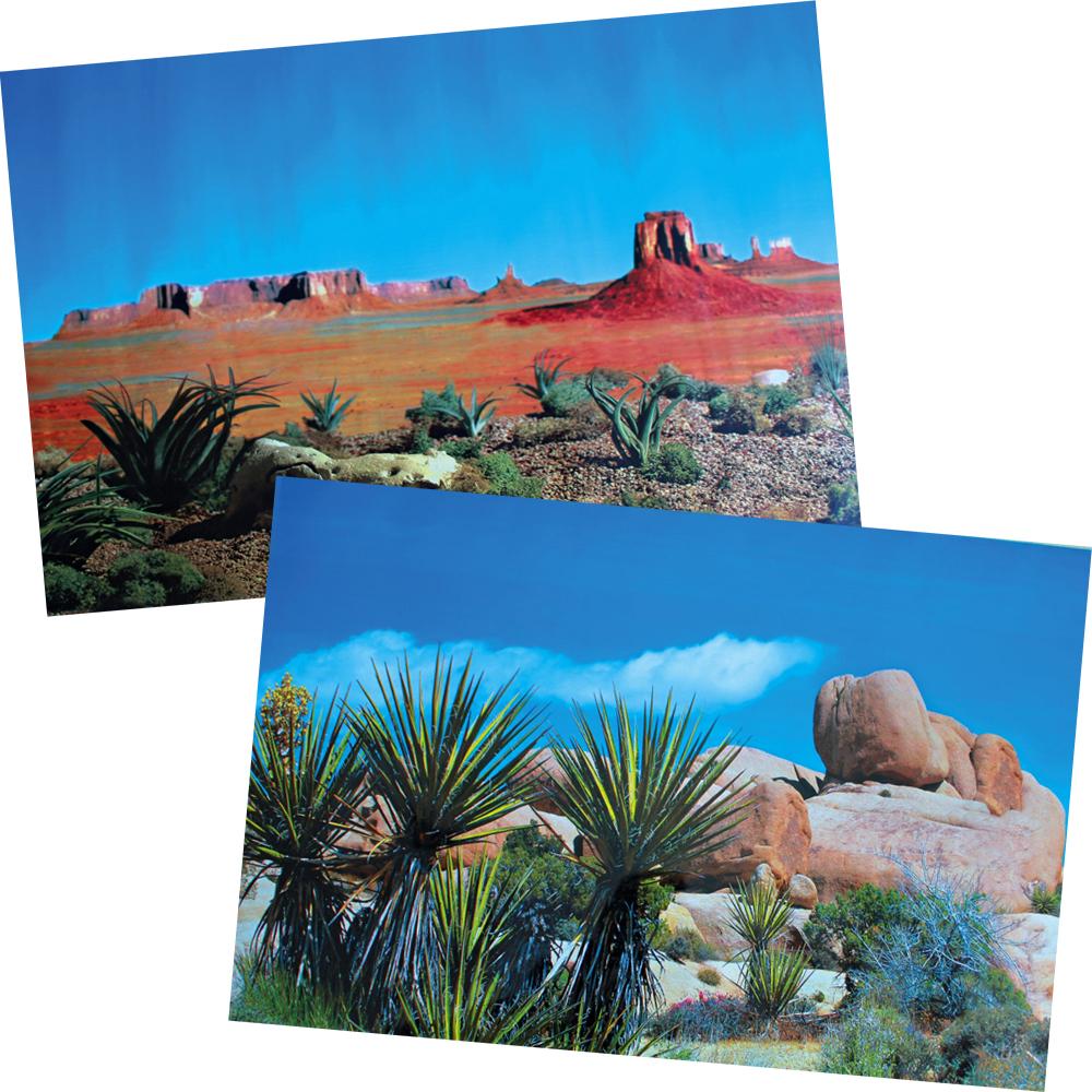 D cor de fond terrarium d sert pour reptile trixie auberdog - Decor fond terrarium desertique ...