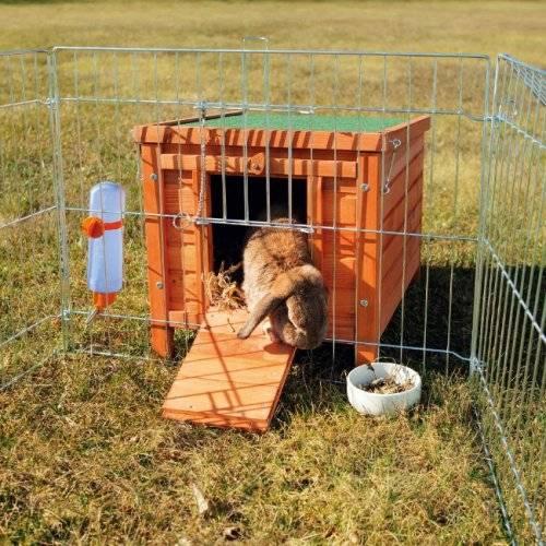 cabane lapin et cochon d 39 inde en pin natura pour rongeur. Black Bedroom Furniture Sets. Home Design Ideas