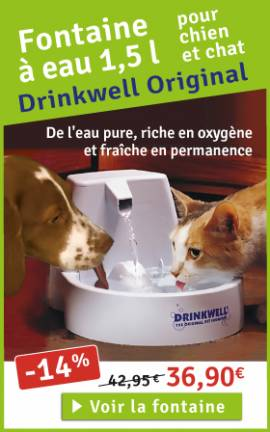 Fontaine Drinkwell pour chat