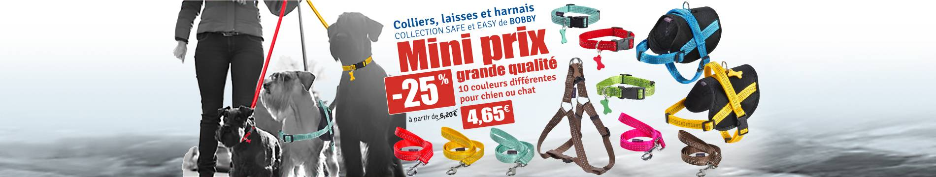 Collection collier, laisse, harnais Bobby